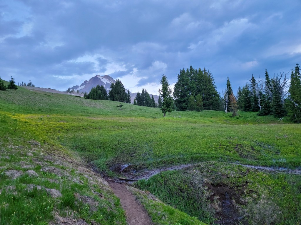 TimberlineTrailJuly (10)