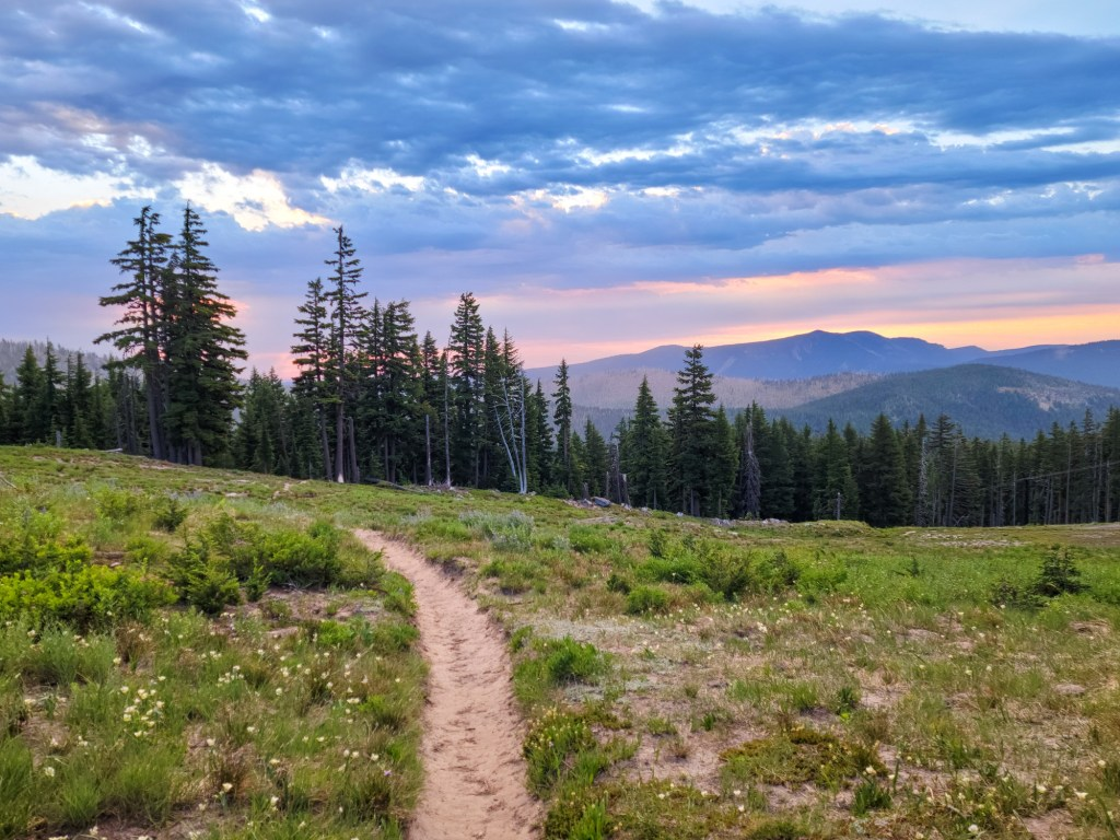 TimberlineTrailJuly (11)