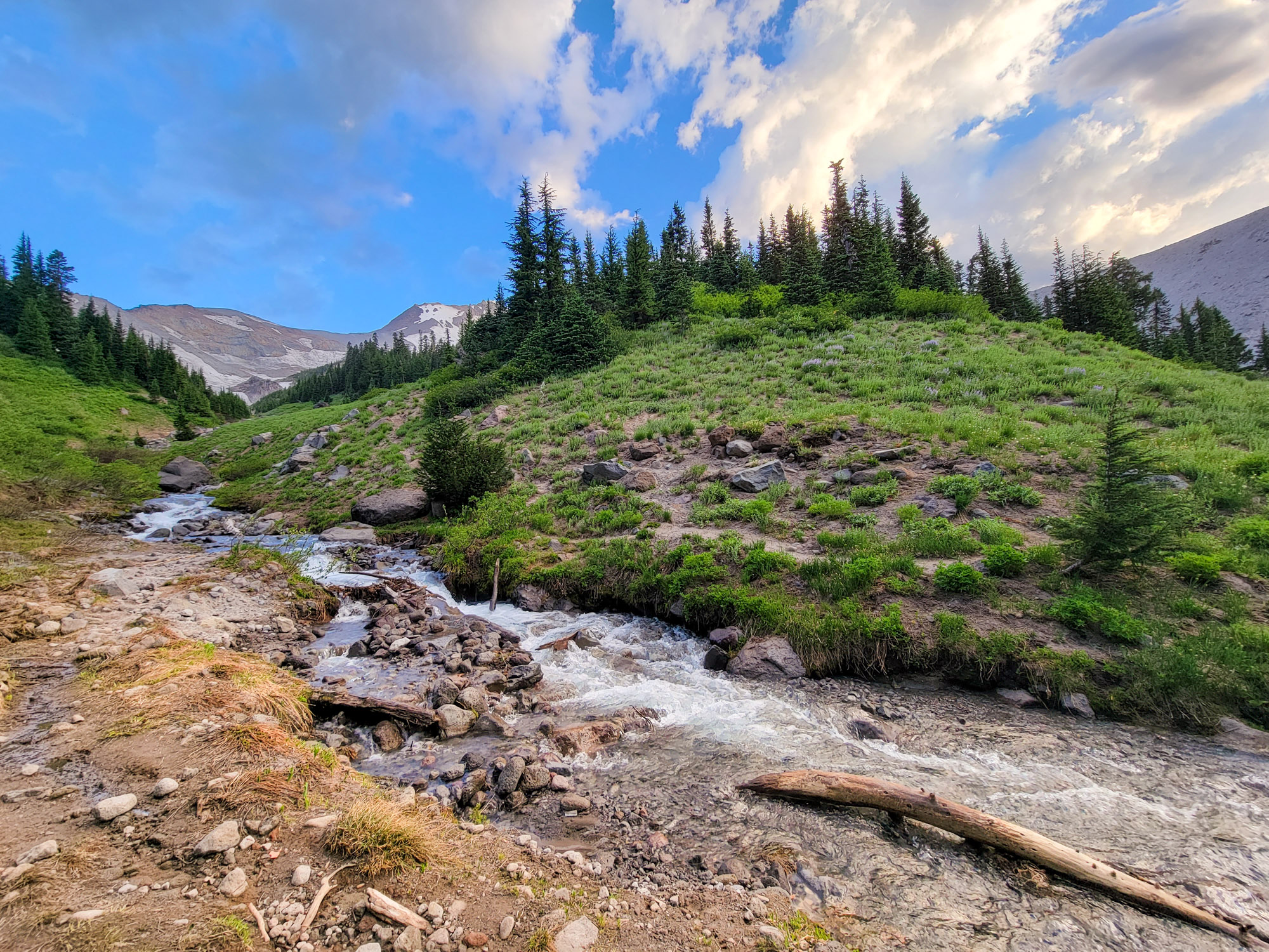 TimberlineTrailJuly (13)