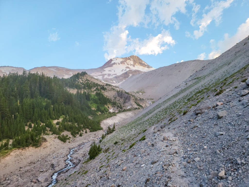 TimberlineTrailJuly (19)