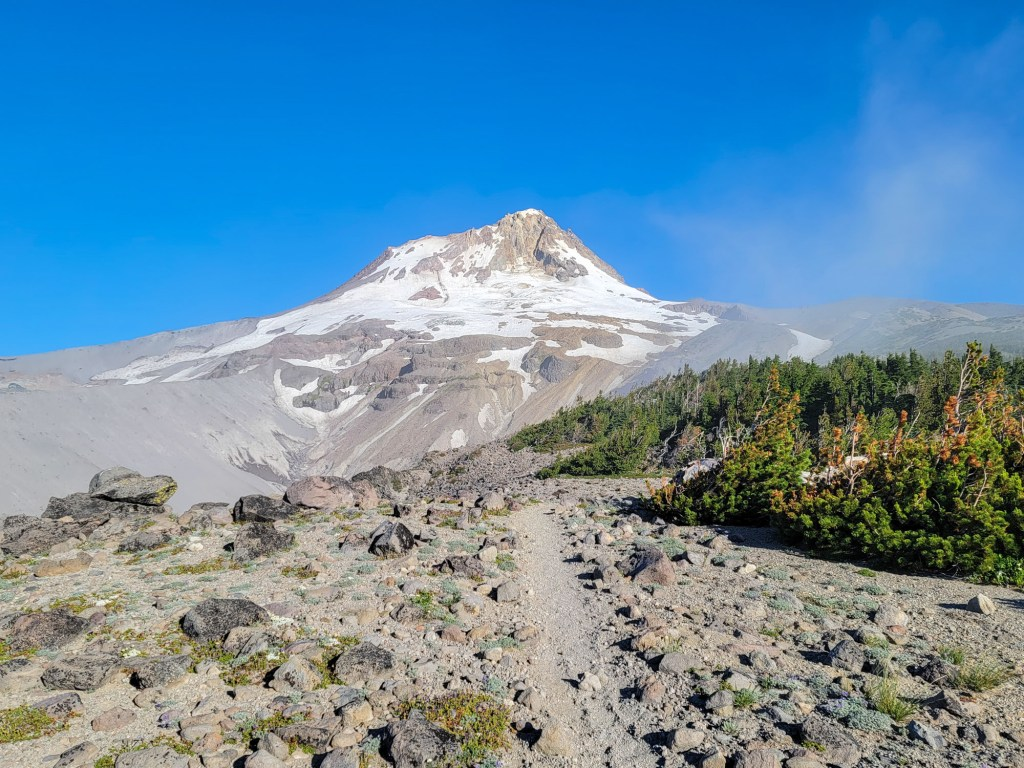 TimberlineTrailJuly (26)