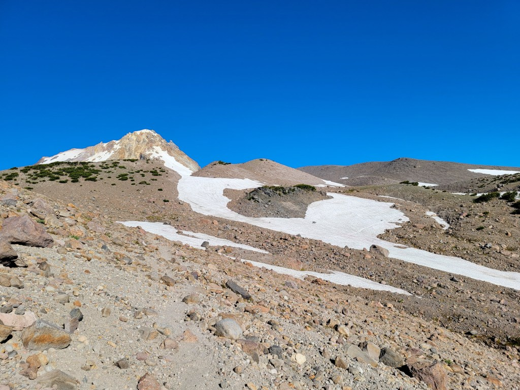 TimberlineTrailJuly (29)