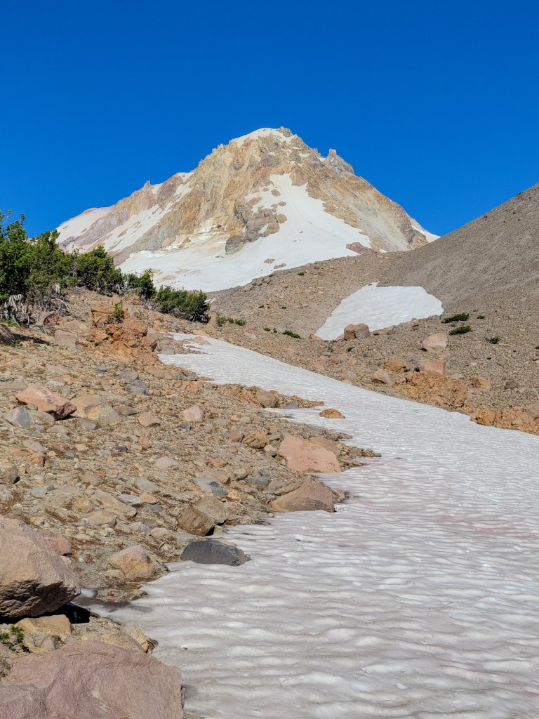 TimberlineTrailJuly (31)