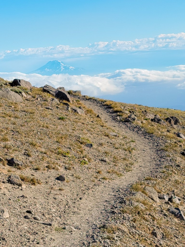 TimberlineTrailJuly (34)