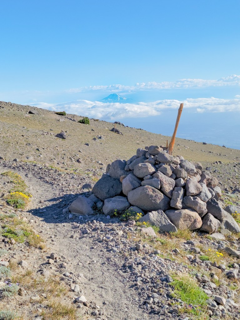 TimberlineTrailJuly (35)