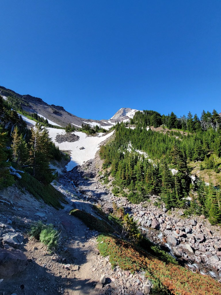 TimberlineTrailJuly (41)