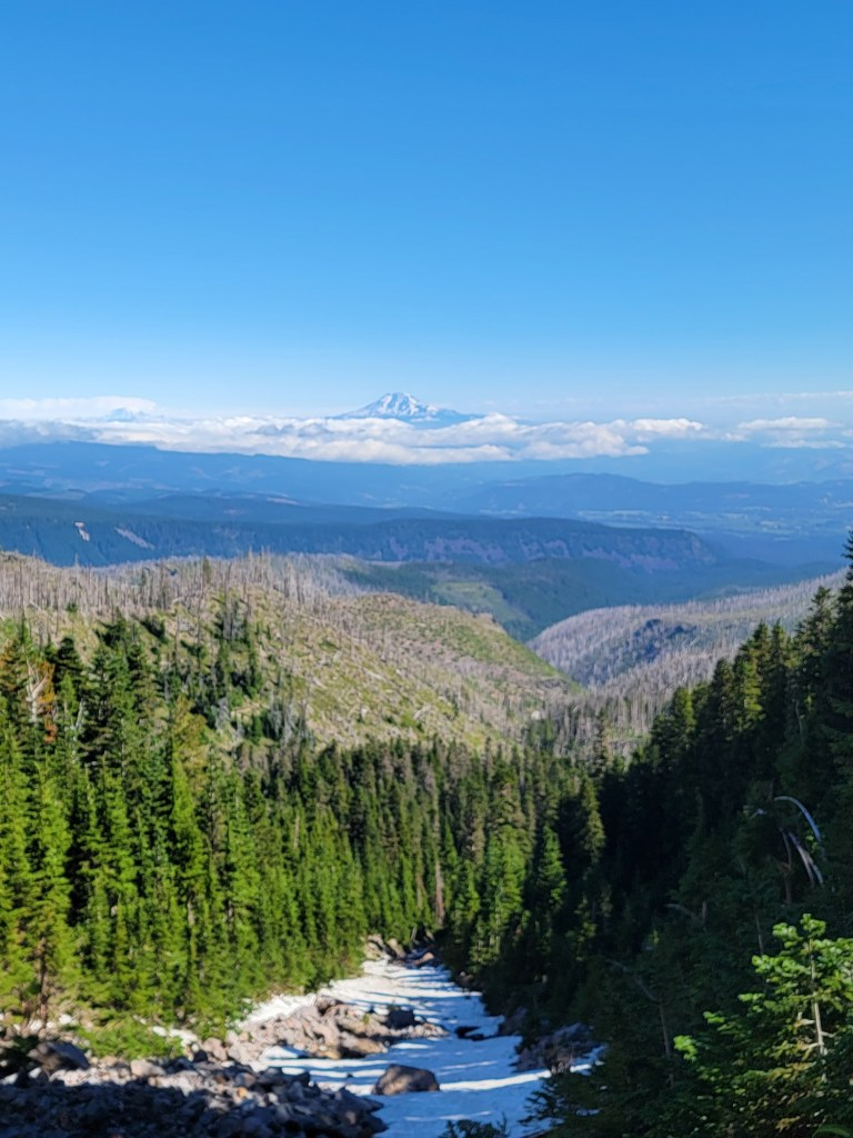 TimberlineTrailJuly (43)