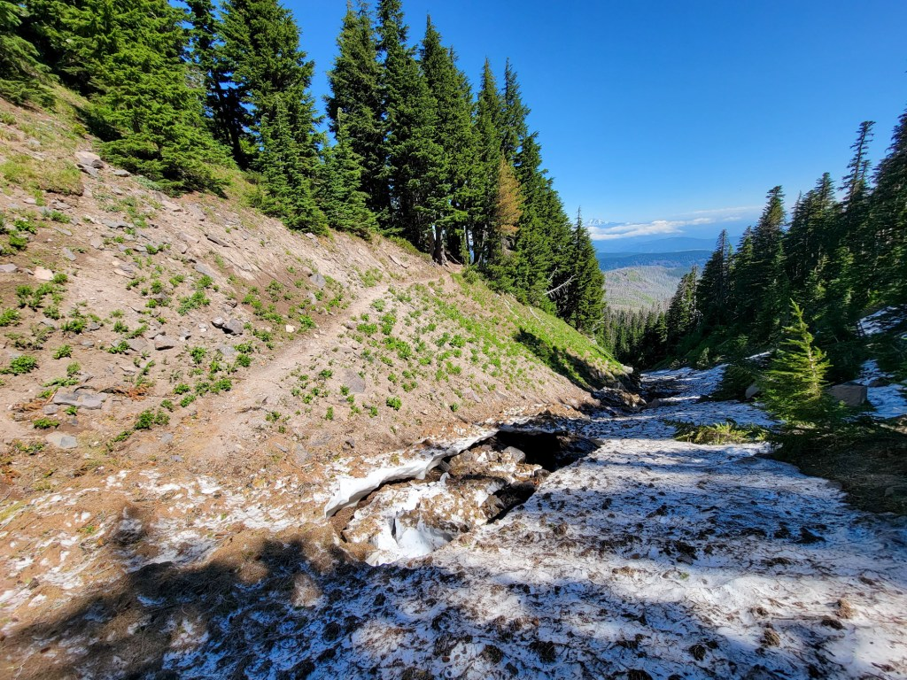 TimberlineTrailJuly (47)