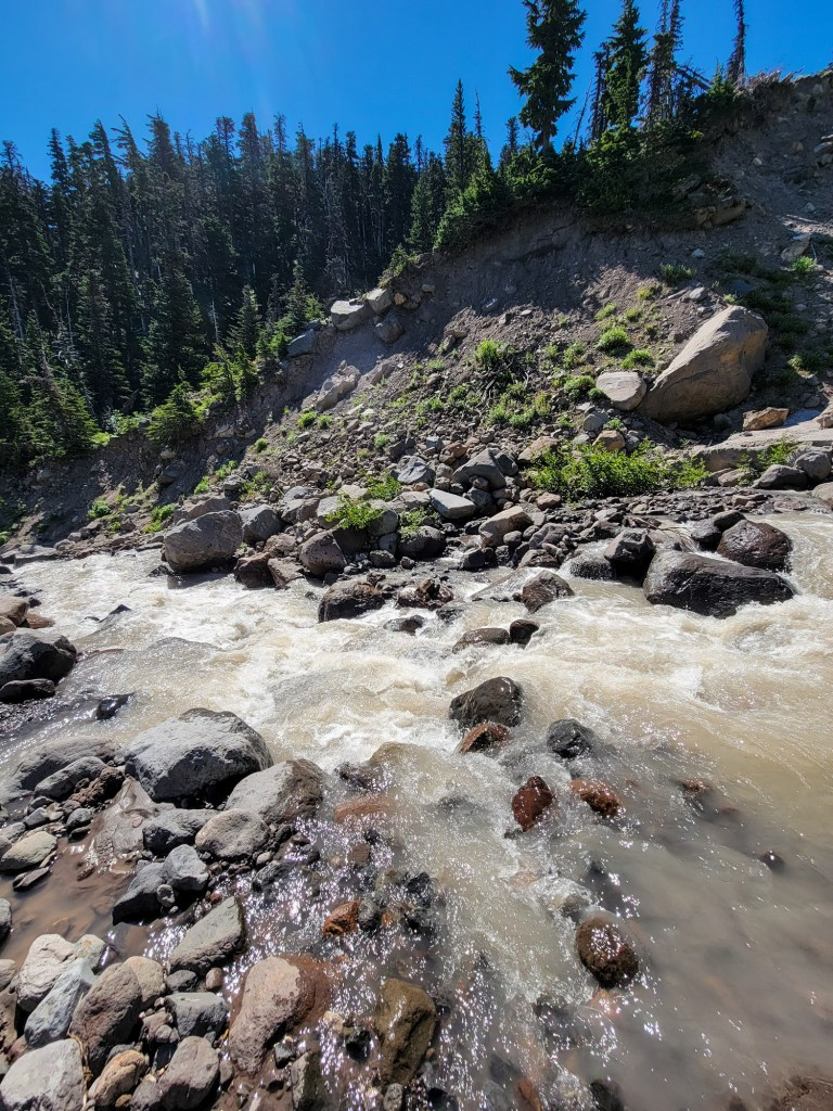 TimberlineTrailJuly (50)