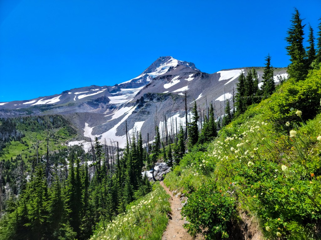 TimberlineTrailJuly (54)