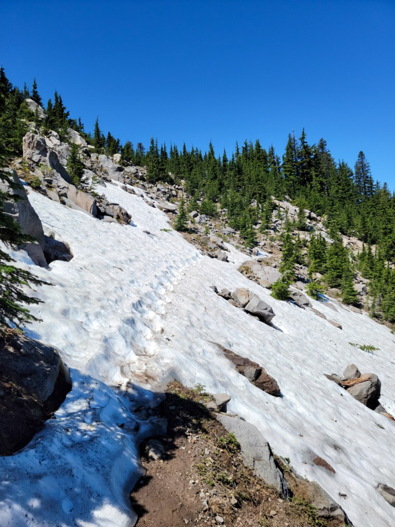 TimberlineTrailJuly (55)