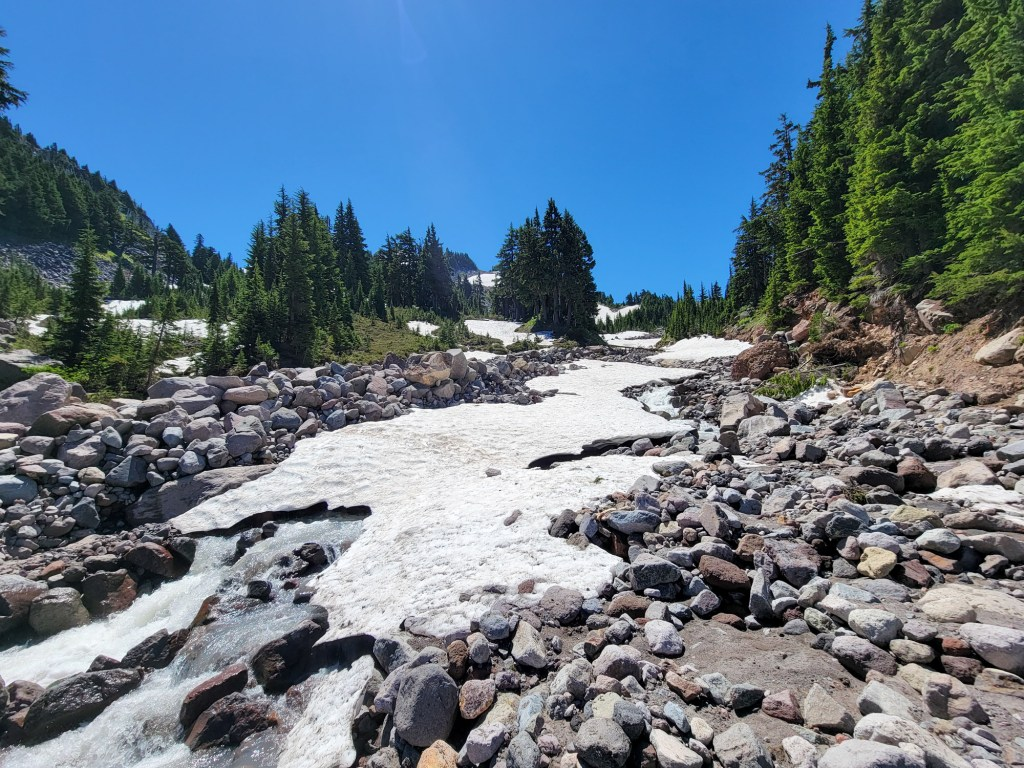TimberlineTrailJuly (59)
