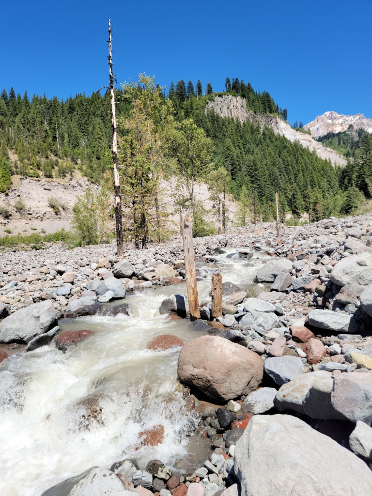 TimberlineTrailJuly (72)