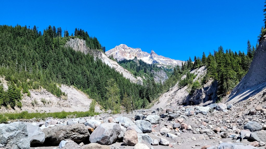TimberlineTrailJuly (75)