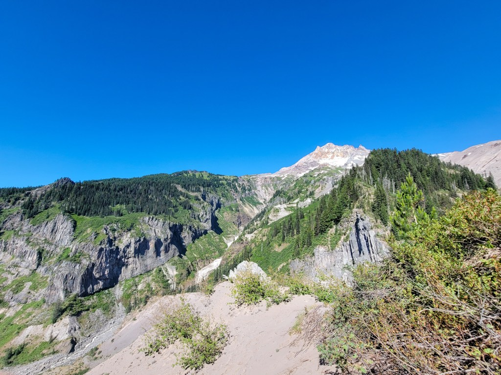 TimberlineTrailJuly (77)