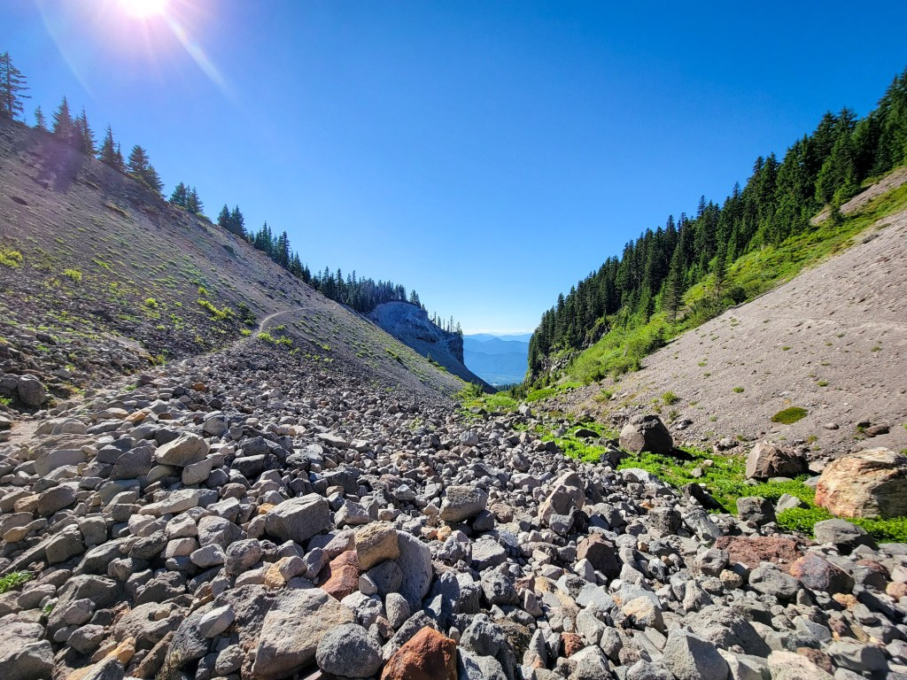 TimberlineTrailJuly (80)