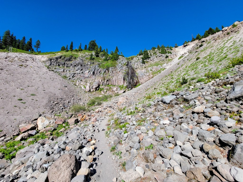 TimberlineTrailJuly (81)